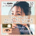 ミッシュブルーミンクォーターヴェールシリーズ ブロンズアッシュ【レビュー】